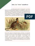 Los Marsupiales.docx