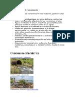 Principales Fuentes de Contaminación.docx