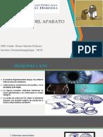 Fisio Vestibular