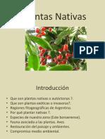 Plantas Nativas.pdf