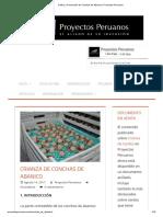Cultivo y Producción de Conchas de Abanico _ Proyectos Peruanos