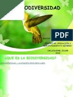 PRESENTACION BLEY ,,.pptx