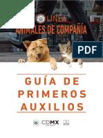 Guia_de Primeros Auxilios