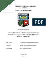 Bioacumulación de Cadmio y Cobre_Concha de abanico
