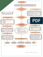 Flujograma Plan de Formacion Distribuidora Lap