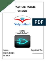 VIDYASTHALI PUBLIC.docx