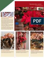 Download Leporello Weihnachtsstern 11