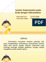 Hidrosefalus pd anak.ppt