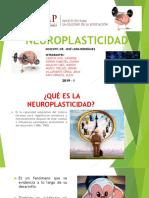 NEUROPLASTICIDAD_EXPOSICIÓN