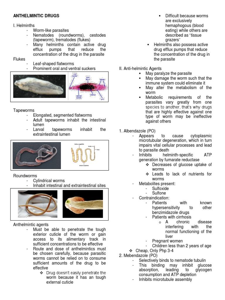 Terapia helmintica, TOXOCARIASIS - Definiția și sinonimele toxocariasis în dicționarul Engleză
