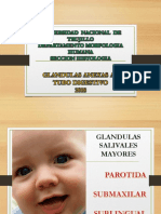 Laboratorio Digestivo Salivales y Páncreas