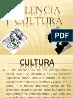 violencia y cultura