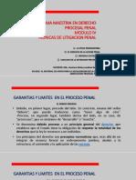 ley de abrev procesal medidas cautelares p.pptx
