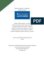 Trabajo Derecho Cormercial y Laboral - Segunda Entrega