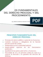 Clase 2 Principios Fundamentales Del Derecho Procesal y Del Procedimiento