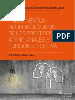 fundamentos neurobiologicos