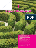 que e sociologia GIDDENS.pdf