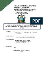 PROYECTO HELADOS-2