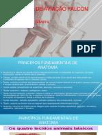 ANATOMIA 1º slide AFAC