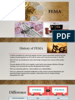 Fema Money Laundering