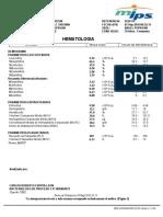 005224174.pdf