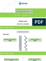 Replicao Do Dna Transcriodorna e Síntese Proteica