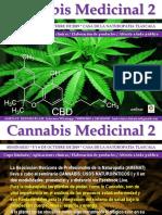 Seminario Cannabis Medicinal II Amenat 5 y 6 de Octubre 2019 Tlaxcala