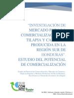 Estudio de Mercado Tilapia y Camarón 2018