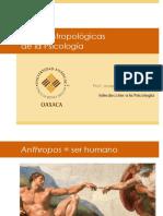 Bases antropológicas