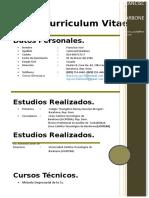Curriculum Vitae (CARBONELL).docx