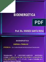 BIOENERGÉTICA - Cópia