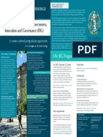 Digital MSc BIG Flyer 2015