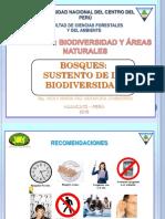 1.-BOSQUES-SUSTENTO-DE-LA-BIODIVERSIDAD (4).pdf