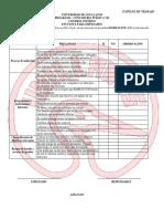 3 PAPELES DE TRABAJO aplicación y diagnostico.docx