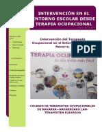 Intervencin de Terapia Ocupacional en Educacin