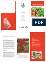 folder-amaranto-e-caruru.pdf
