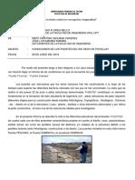PUENTE-PESCHAY.pdf
