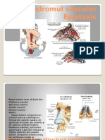 sindromul vascular epistaxis.pptx
