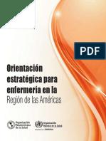 Informe Enfermeria America