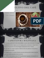 El Cultivo Del Café