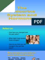 Slides on the Endocrine System