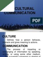 Intercultural Report