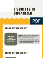 Lesson 6a How Society is Organized