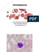 Células Hematopoéticas