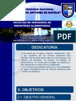 HUARAZ 1.pptx