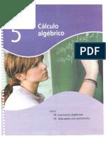 Matemática e Realidade. 8º Ano. Iezzi - Dolce - Machado