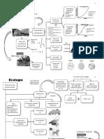 Resumen de Ecología