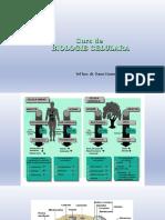 Curs 1 Biocel