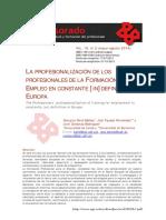La Profesionalización de Los Profesionales###
