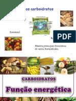 2- Função Dos Carboidratos